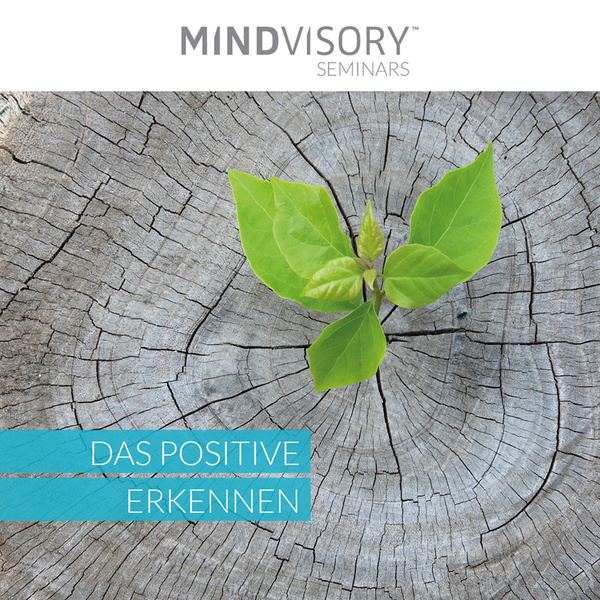 Das Positive erkennen