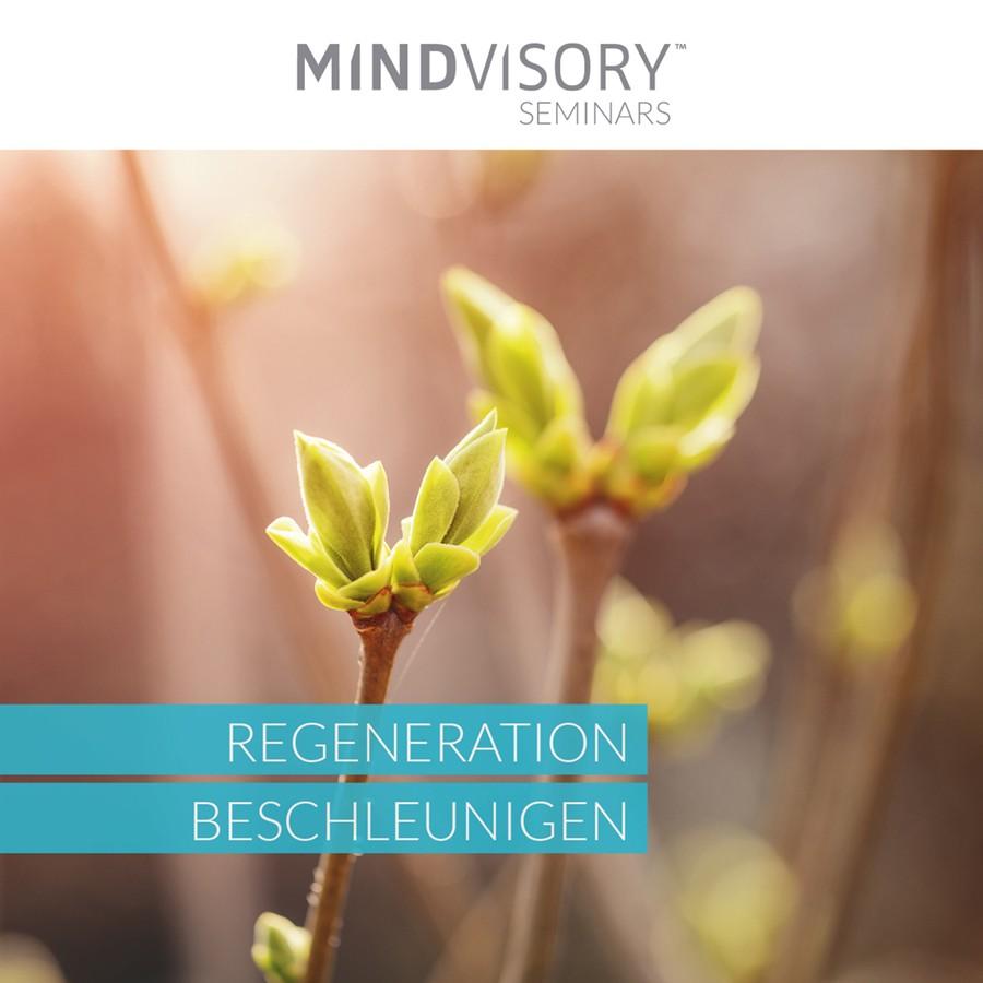 Regeneration beschleunigen